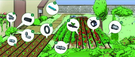 Veggie Garden Applicazione